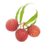 Ripe lychee fruit Stock Image