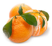 Ripe mandarin with green leaf Stock Photography