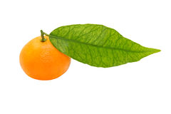 Ripe mandarin with green leaf taken closeup.Isolated. Stock Photos