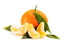 Ripe mandarin with leaves close-up Royalty Free Stock Image
