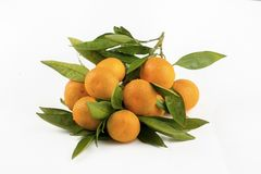 Ripe mandarines with leaves close-up on a white background. Tangerines with leaves on a white background.  stock photos