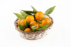 Ripe mandarines with leaves close-up on a white background. Tangerines with leaves on a white background.  stock photography