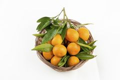 Ripe mandarines with leaves close-up on a white background. Tangerines with leaves on a white background.  stock photo