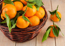 Ripe mandarins with leaves in a basket Royalty Free Stock Image