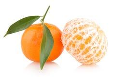 Ripe mandarins Royalty Free Stock Photo