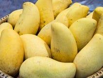 Ripe mango Royalty Free Stock Images