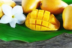 Ripe mango cut in square with other yellow mangoes on a green leaf. Ripe mango fruit cut in square with other yellow mangoes on a green leaf Stock Photos