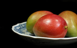 Ripe mango fruit in bowl. Three ripe red and green mango fruit in bowl with black background Royalty Free Stock Photos