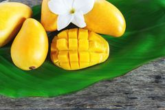Ripe mango cut in square with other yellow mangoes on a green leaf. Ripe mango fruit cut in square with other yellow mangoes on a green leaf Stock Photography