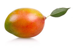 Ripe mango fruit isolated Stock Photo