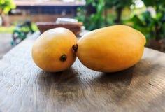 Ripe mango onwood Stock Image