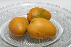 Ripe Mangoes Royalty Free Stock Images