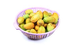 Ripe mangoes Stock Photo