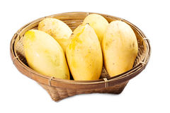 Ripe Mangoes in basket Stock Images