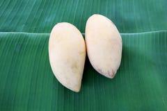 Ripe mangoes. Ripe mangoes on the green banana leaf Stock Photos