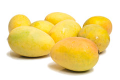 Ripe mangoes Stock Image