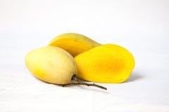 Ripe Mangoes Stock Images