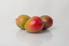 Ripe Mangos Stock Photography