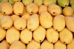 Ripe Mangos Stock Image