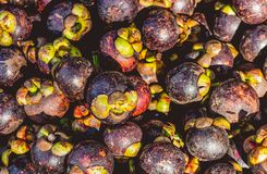 Ripe mangosteen fruits in a heap royalty free stock photos