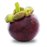 Ripe mangosteen Royalty Free Stock Photography