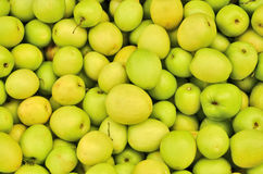 Ripe mankey apples. Ripe mankey apple collection closeup Royalty Free Stock Images