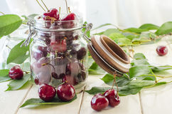 Ripe maroon cherries in a glass vase and a jar. Ripe and fresh burgundy cherries in a glass vase and a jar for healthy food and preparations for the winter Stock Images