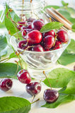 Ripe maroon cherries in a glass vase and a jar. Ripe and fresh burgundy cherries in a glass vase and a jar for healthy food and preparations for the winter Royalty Free Stock Photography