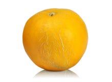 Ripe melon. Fresh ripe melon  on white background Stock Image