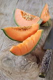 Ripe melon slices Stock Photography