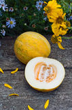 Ripe melon on table Stock Photography