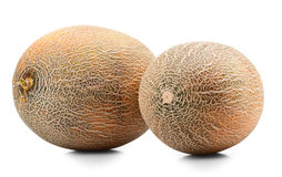 Ripe melon Stock Photography