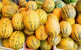 Ripe melons Royalty Free Stock Photos