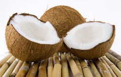 Ripe and mouth-watering coconut. Ripe and appetizing coconut isolated on white background Stock Photos