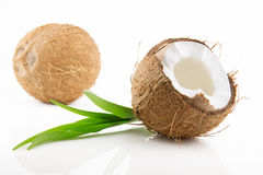 Ripe and mouth-watering coconut. Ripe and appetizing coconut isolated on white background Royalty Free Stock Image