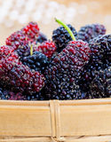 Ripe mulberries Royalty Free Stock Images