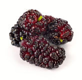 Ripe mulberry Stock Photos