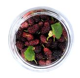 Ripe mulberry berries Stock Photos