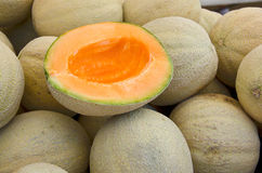 Ripe muskmelon Royalty Free Stock Image