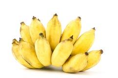 Ripe native banana Stock Images