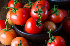 Ripe natural tomatoes with leaves in clay bowl Royalty Free Stock Photo