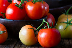 Ripe natural tomatoes with leaves in clay bowl Royalty Free Stock Image