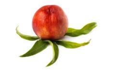 Ripe nectarine Stock Photo