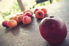 Ripe nectarine, with apricots in the background, on the rustic wooden table Royalty Free Stock Photo