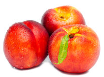Ripe nectarine with a green leaf in water drops Royalty Free Stock Photo