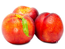 Ripe nectarine in water drops on a white background Royalty Free Stock Photography