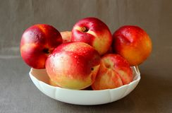 Ripe nectarines in a bowl Stock Photography