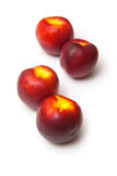 Ripe nectarines Stock Images