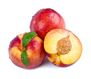 Ripe nectarines stock images