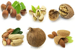 Ripe nuts Royalty Free Stock Images